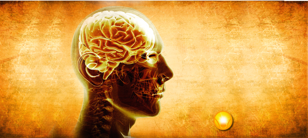 Brain-Building